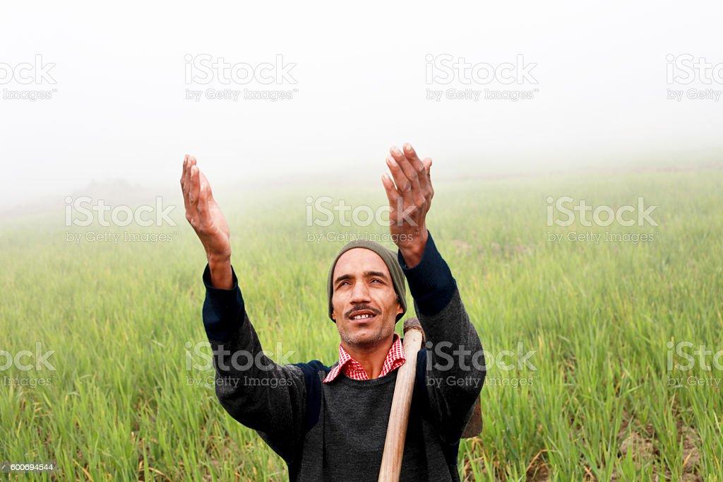 Farmer praying to god for good wheat crop stock photo