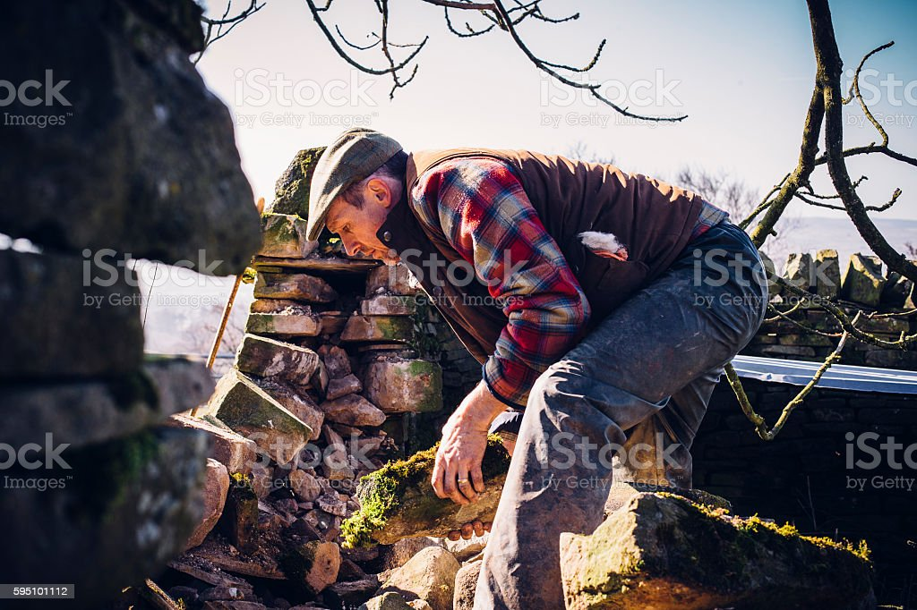 Farmer Repairing Old Stone Wall stock photo