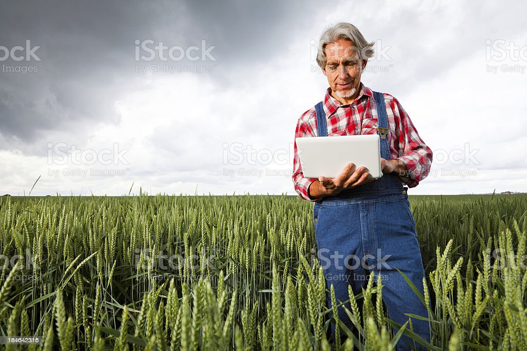 farmer selling his crop over the internet stock photo