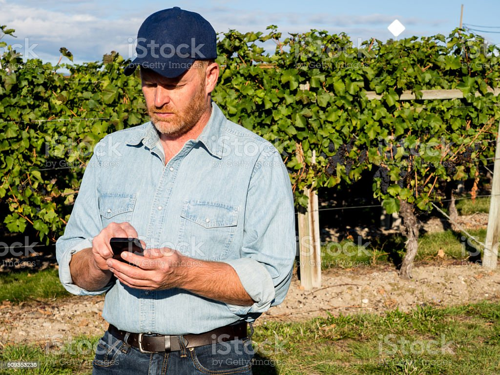 Farmer, Smartphone with App, Email, Calling or Texting stock photo