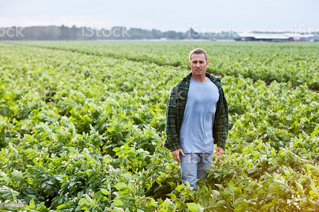 Farmer standing in field stock photo