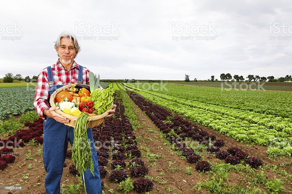 farmer standing in front of his field stock photo