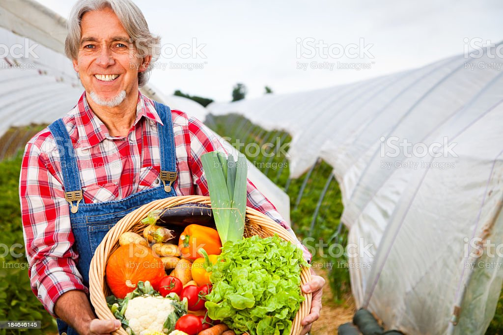farmer standing in front of his greenhouse royalty-free stock photo