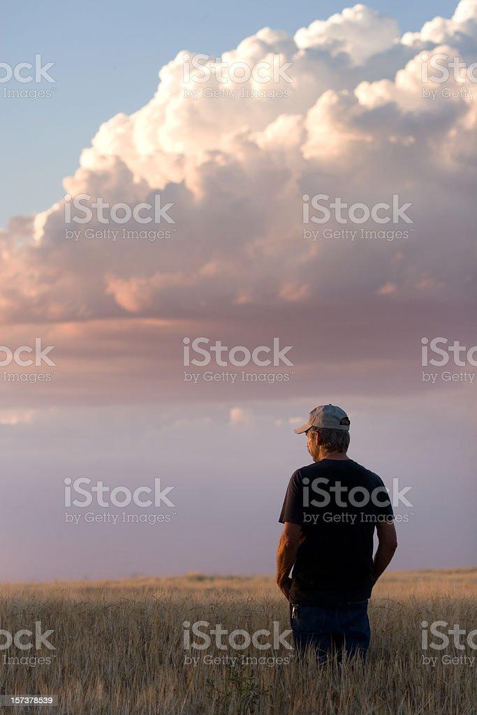 Farmer Standing in Grain Field stock photo