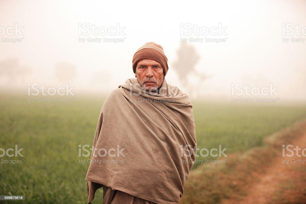 Farmer standing in wheat field during winter season stock photo