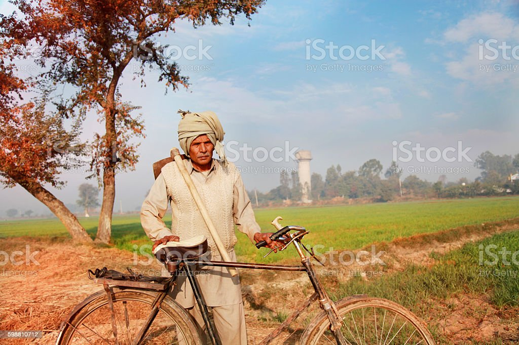 Farmer Standing in wheat field with bicycle and holding hoe stock photo