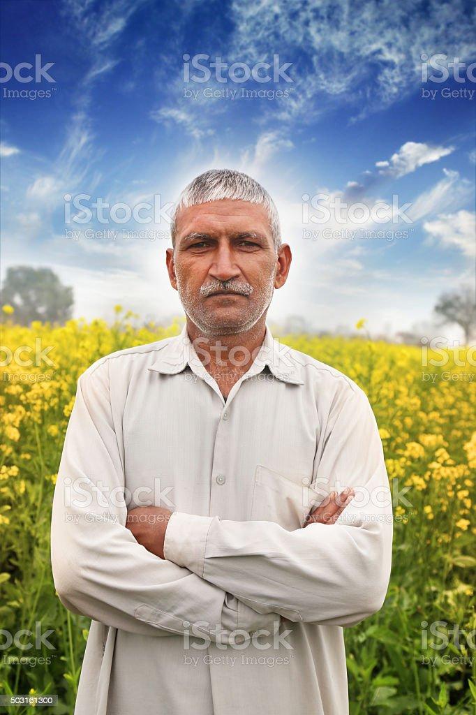 Farmer Standing Portrait in Near Mustard Field stock photo