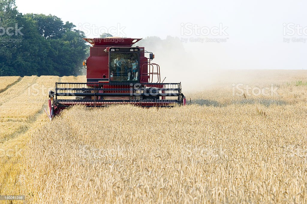 Farmer steering combine while giving family a ride stock photo
