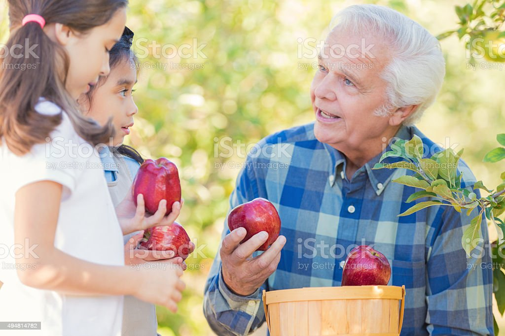 Farmer talking to elementary students during field trip at orchard stock photo
