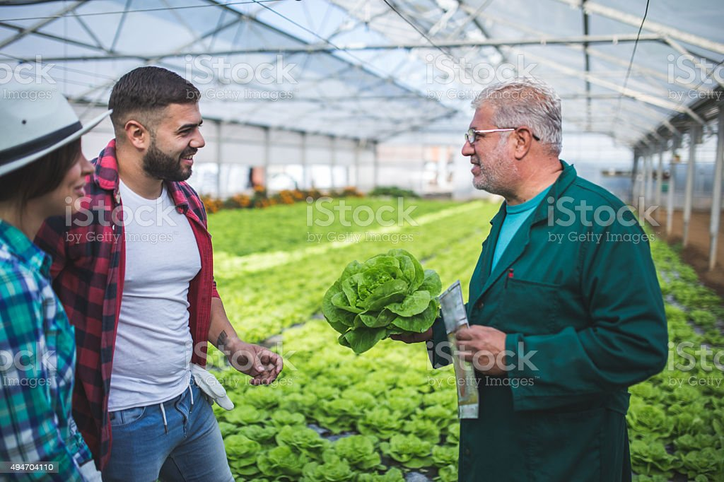Farmer teaching how to gardening stock photo