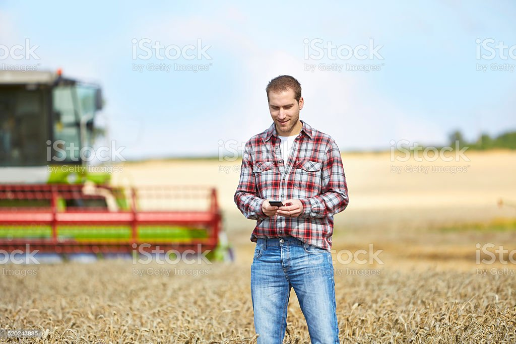 Farmer typing on cell phone with combine harvester behind stock photo