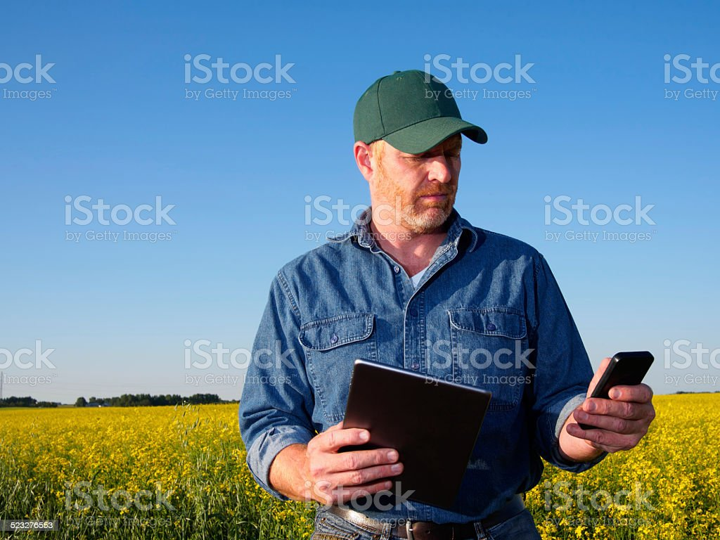 Farmer using a Computer and Phone stock photo