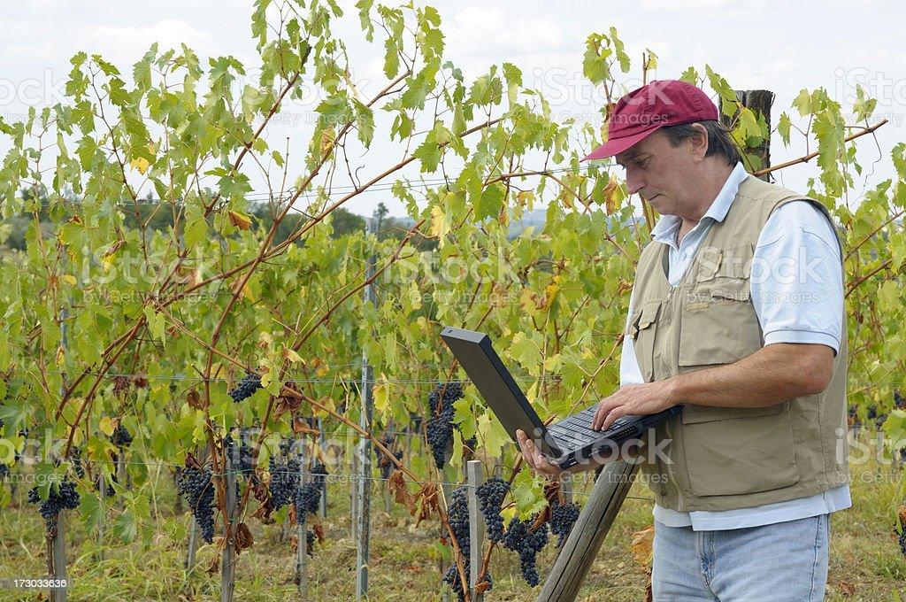 Farmer using laptop royalty-free stock photo