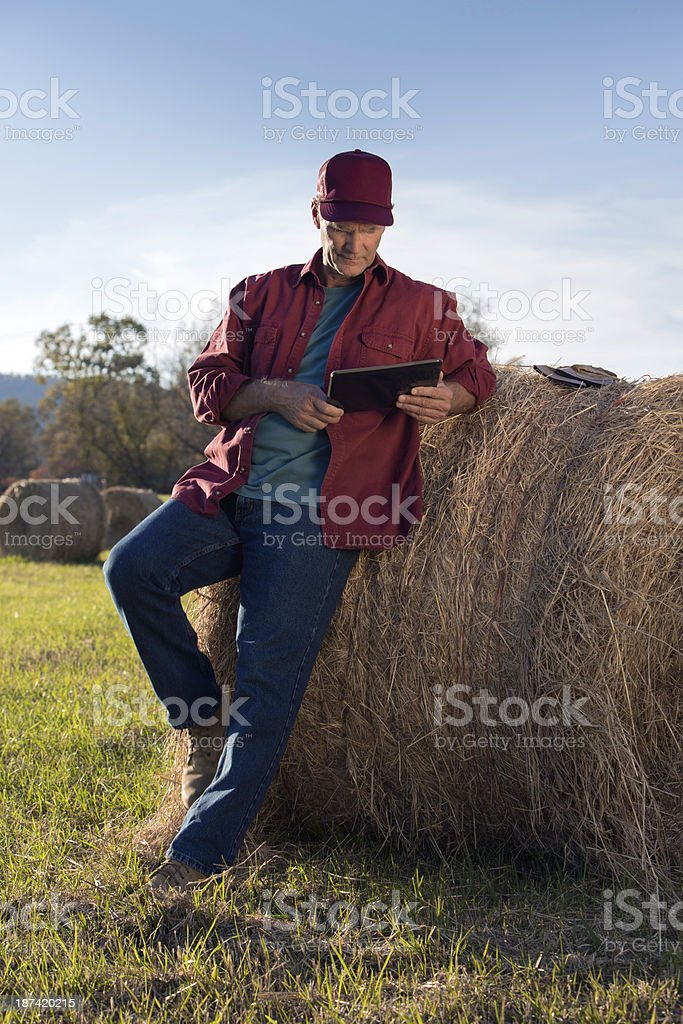 Farmer Using Technology Vertical royalty-free stock photo