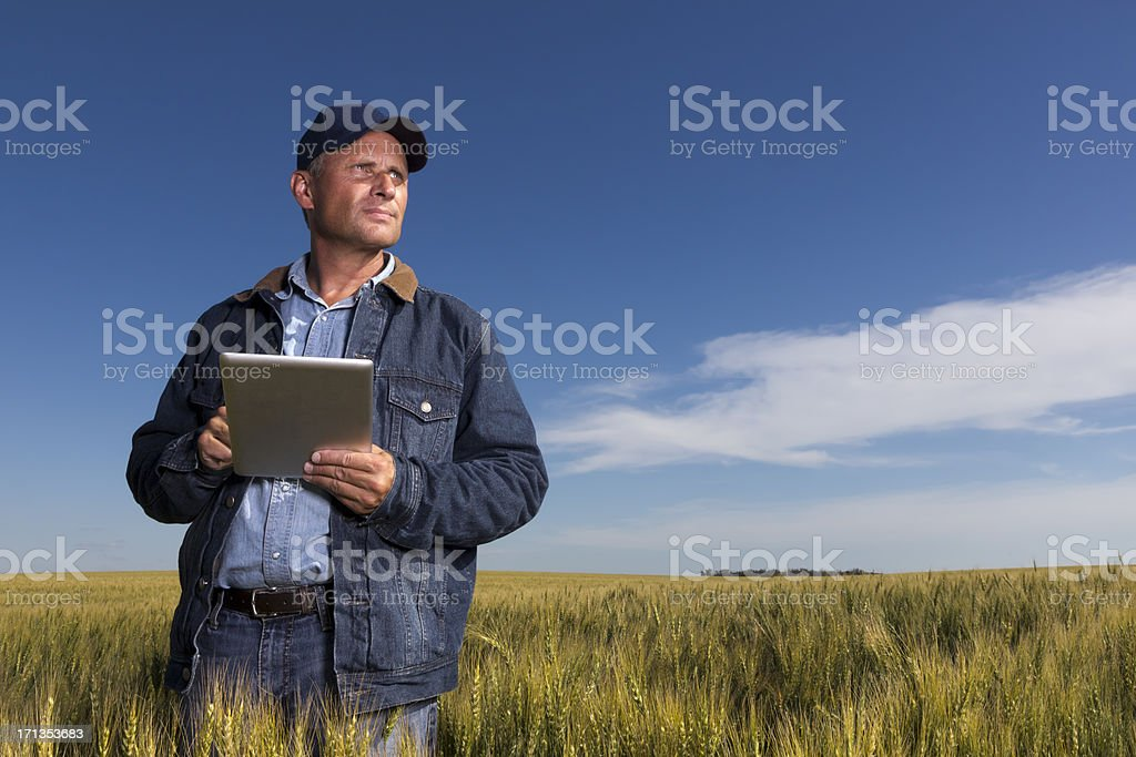 Farmer, Wheatfield and Tablet PC stock photo