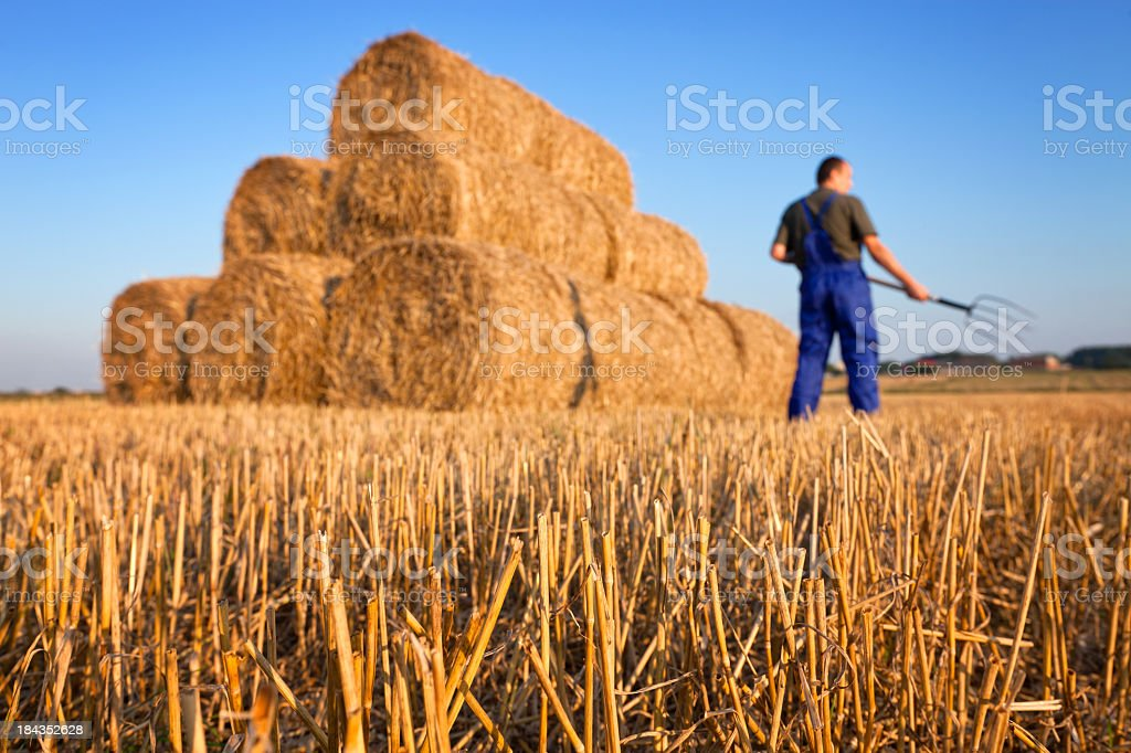 Farmer with a pitchfork royalty-free stock photo