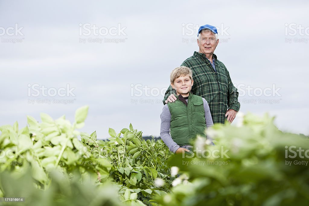 Farmer with grandson in field stock photo
