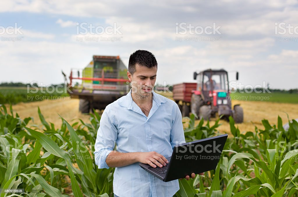 Farmer with laptop during harvest stock photo