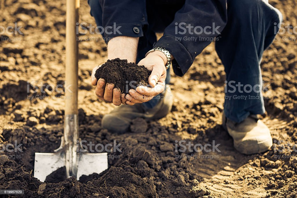 farmer with soil in open palms stock photo