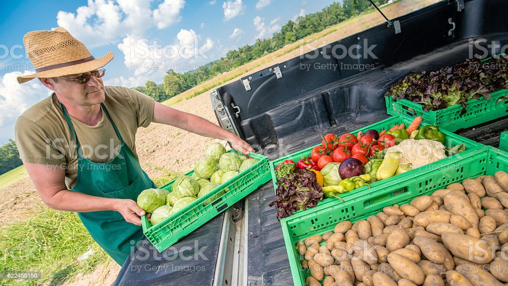Farmer with vegetable crates stock photo