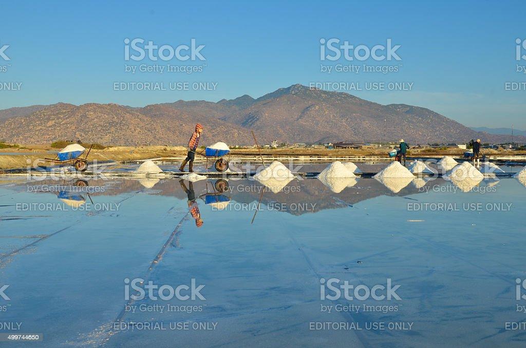farmer working at salt field in Ca na stock photo