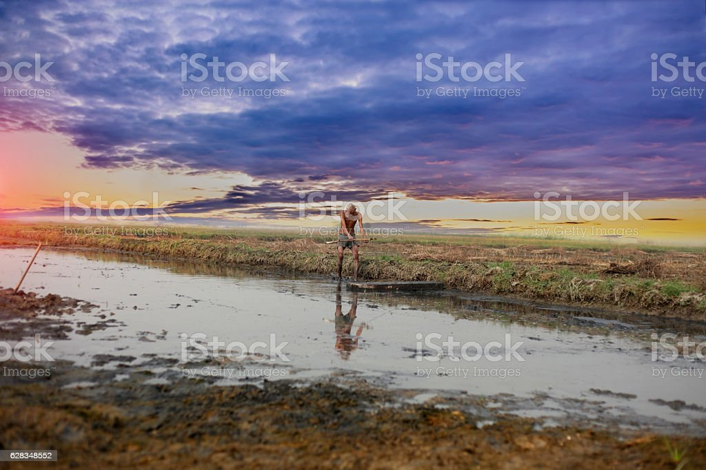 Farmer working hard in to the field stock photo