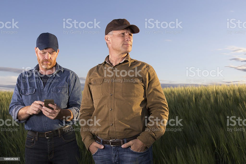 Farmers and a Cellphone stock photo