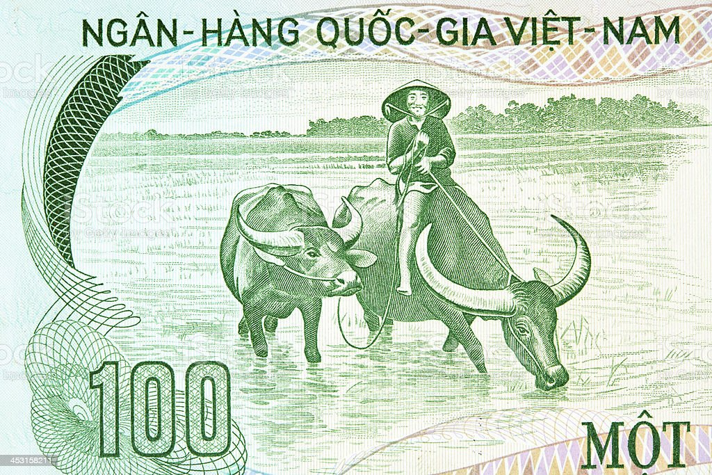 Farmers and Water Buffalo on Banknote stock photo