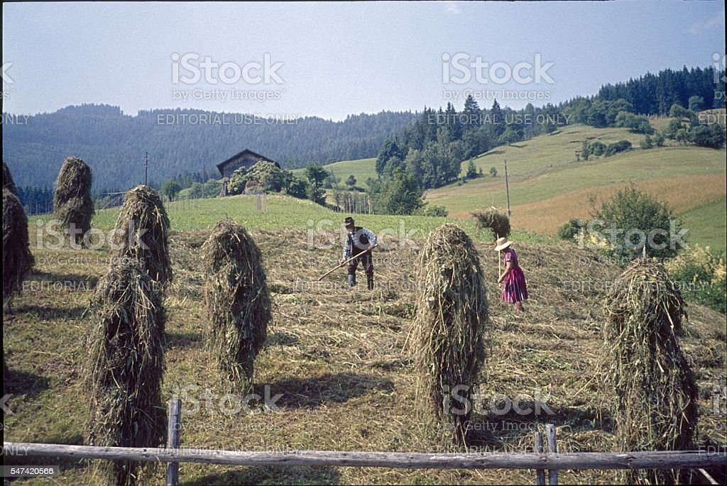 Farmers at the Hay, Austria stock photo