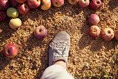 Farmer's boot on ground
