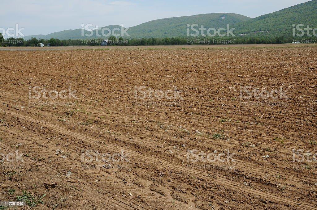 Campo de agricultores no início da primavera foto royalty-free