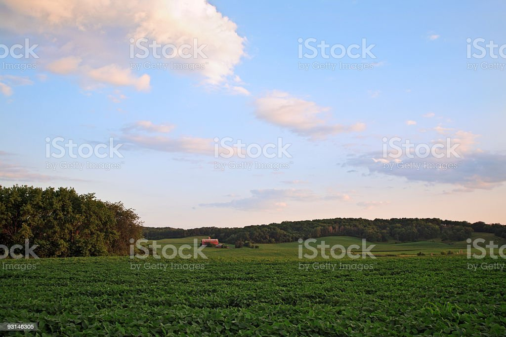 Farmers Field Just Before Sundown stock photo