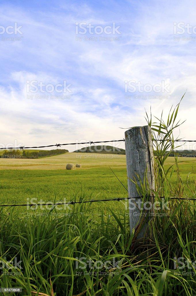 Farmers Field royalty-free stock photo