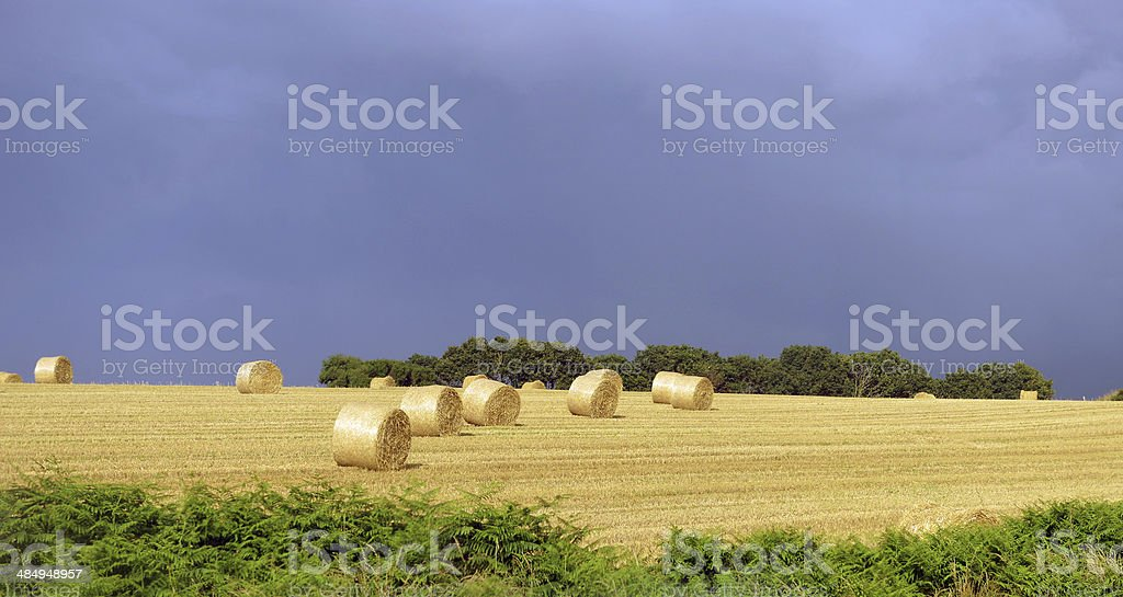 Farmers field with hay bales royalty-free stock photo