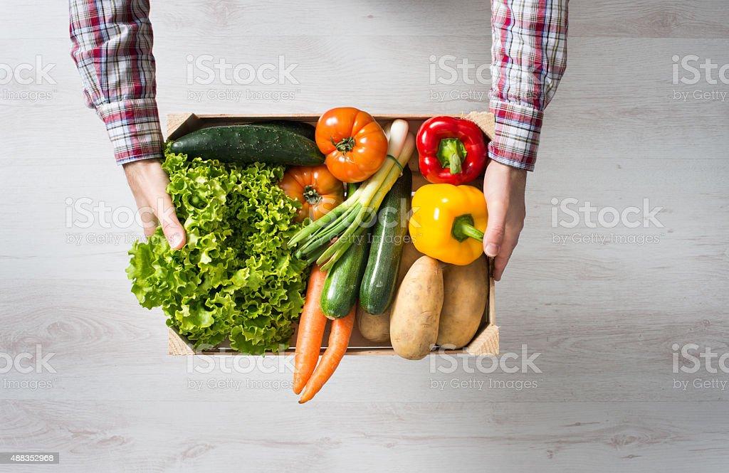 Farmer's harvest stock photo