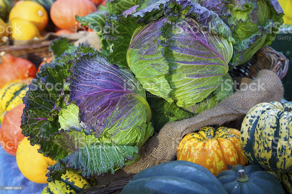 Farmer's market cabbage and winter squash royalty-free stock photo