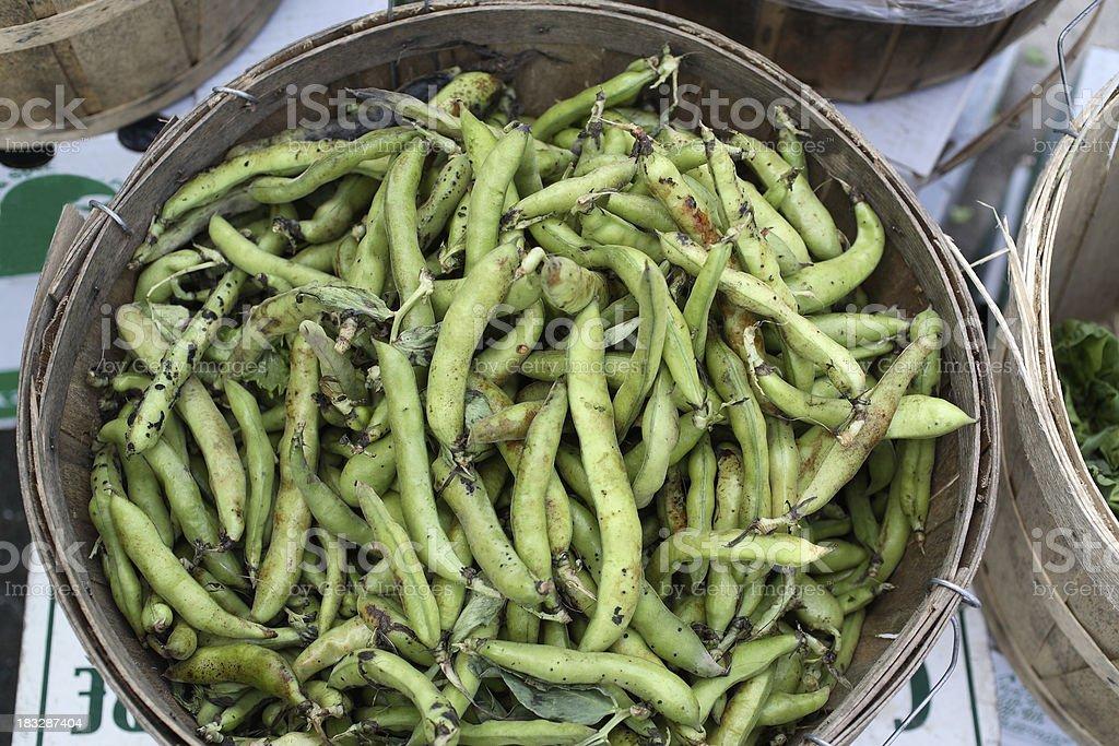 Farmers Market: Fava Beans stock photo