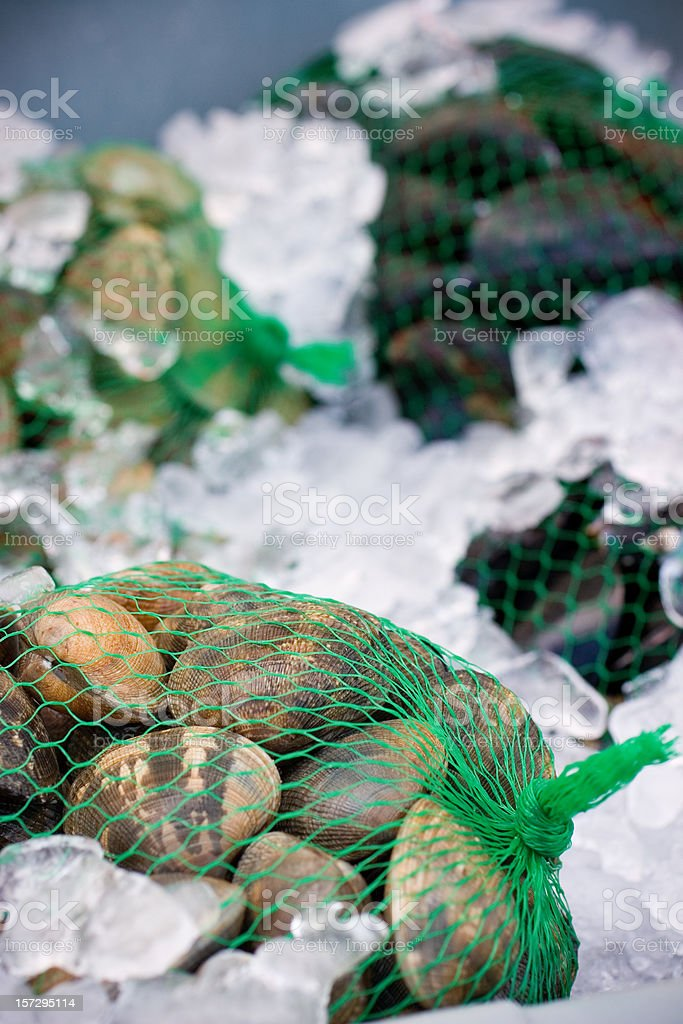 Farmer's Market - Live Clams stock photo