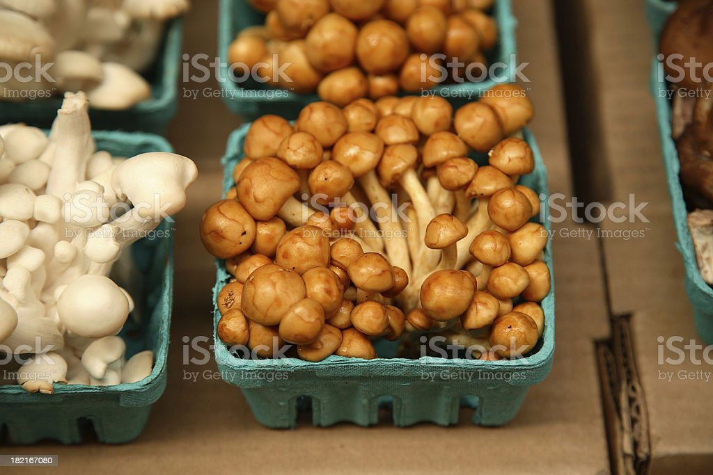 Farmers Market: Mushrooms royalty-free stock photo