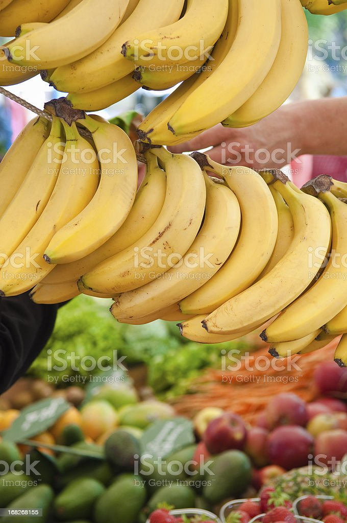 Farmers market organic produce. royalty-free stock photo