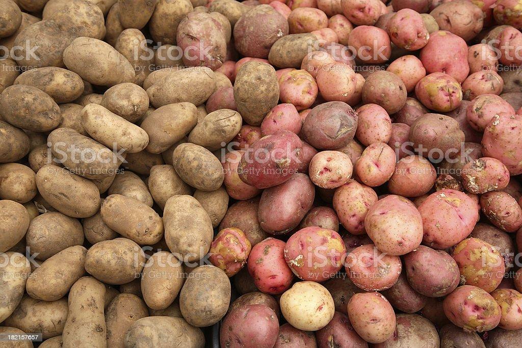 Farmers Market: Potatoes stock photo