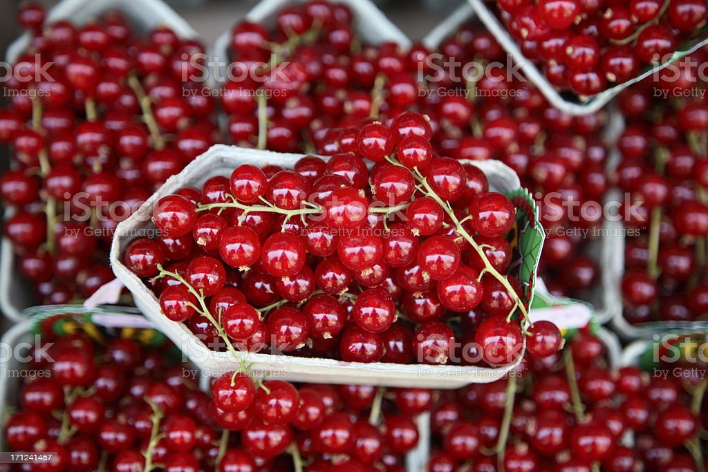 Farmers Market: Red Currants royalty-free stock photo