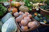 Farmer's market winter squash