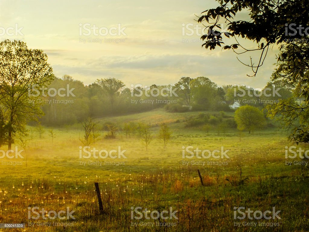 Farmers Memory stock photo