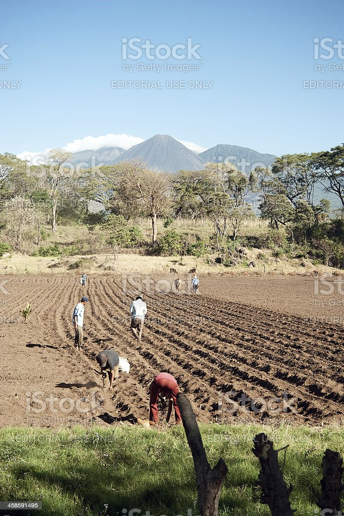 Farmers stock photo