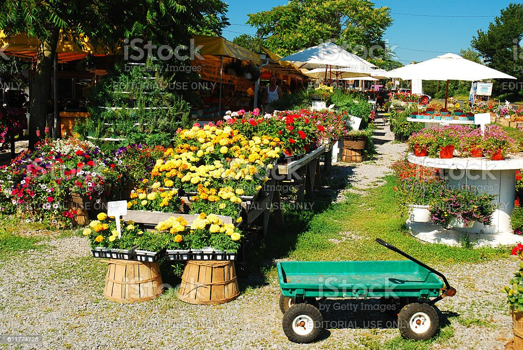 Farmers Produce Stand, from Farm to Table stock photo