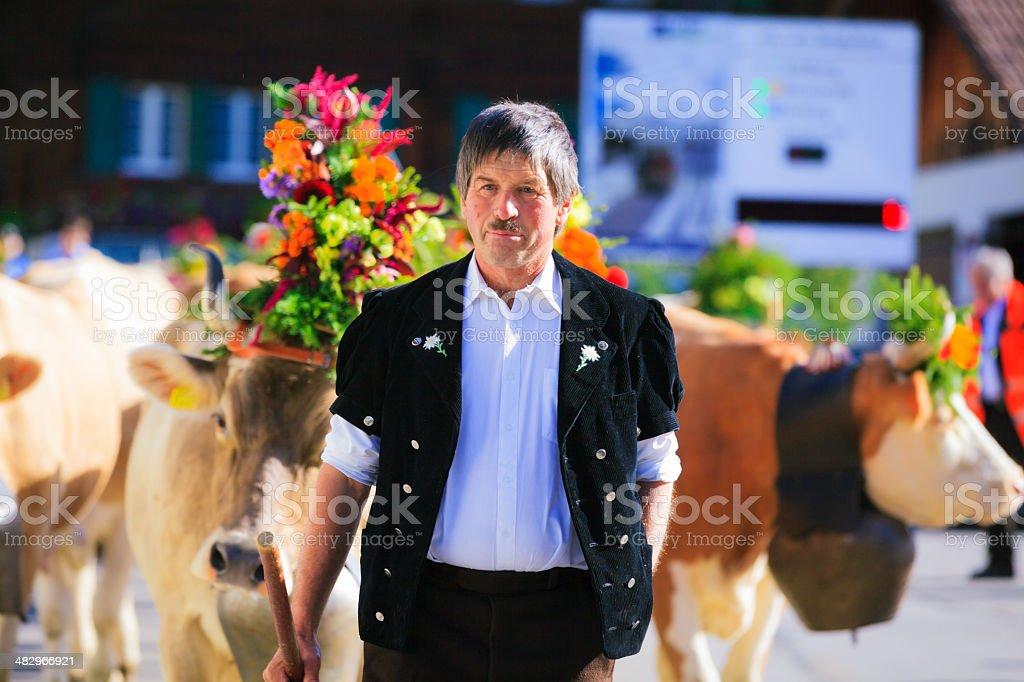 farmers taking their livestock to the aelplerfest stock photo