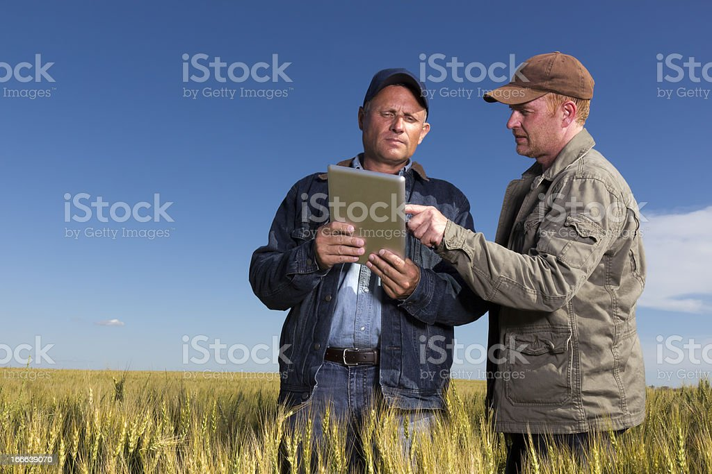 Farmers with Tablet Computer stock photo