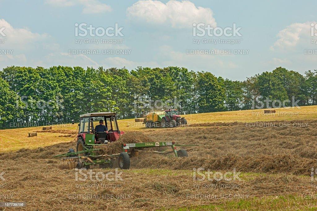 Farmers work royalty-free stock photo