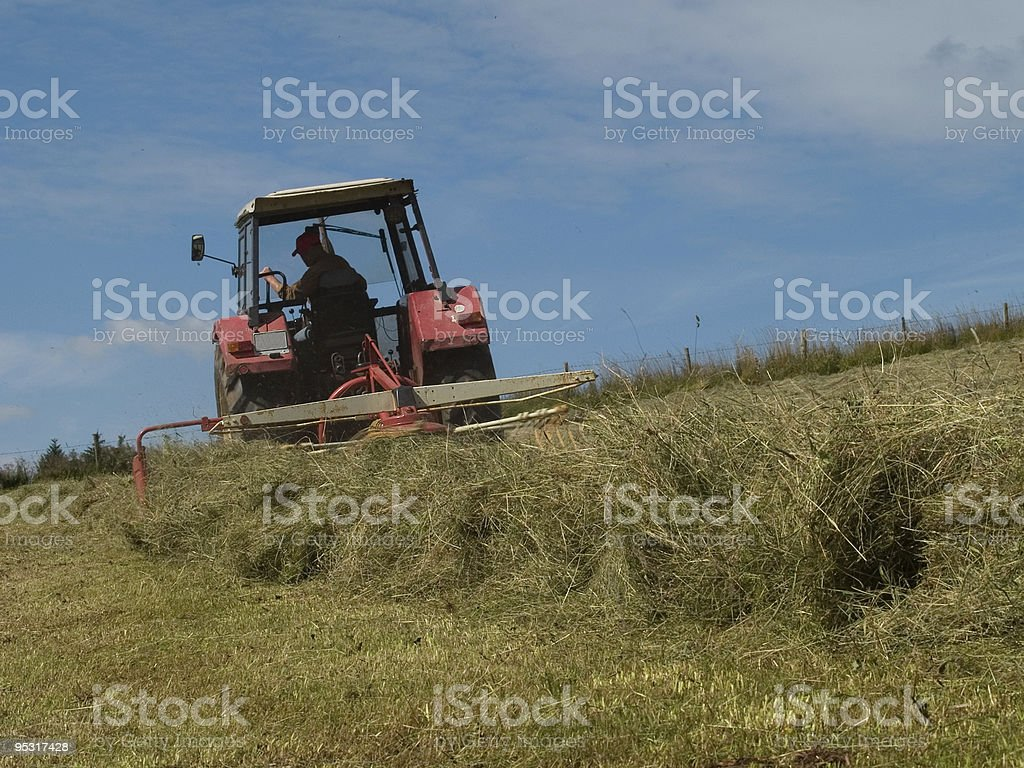 Farmers work stock photo
